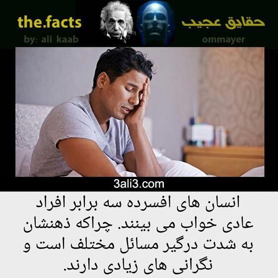 fact-new (3)