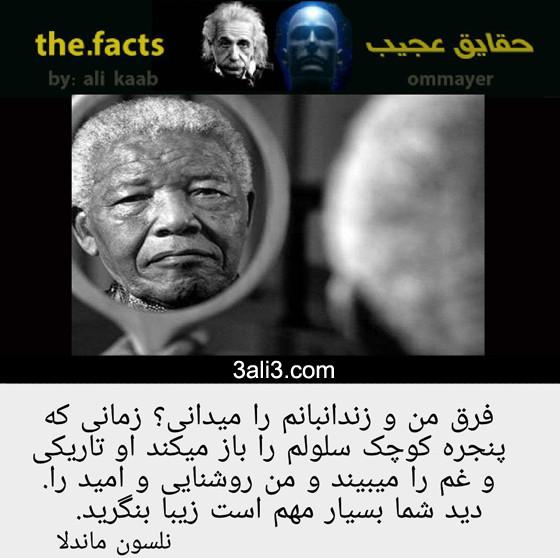 fact-new (4)