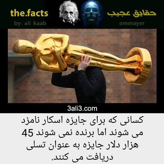 fact-new (5)