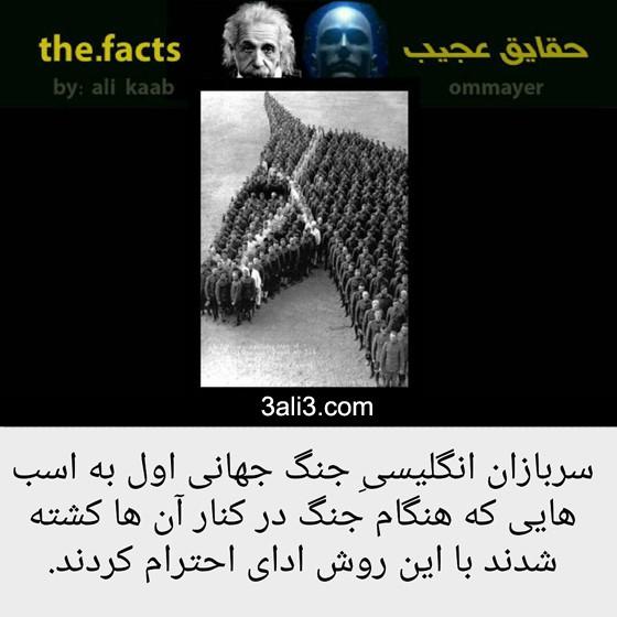 fact-new (9)