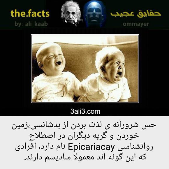 fact (1)