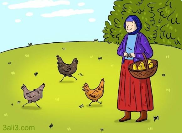 معمای مرغ و تخم مرغ