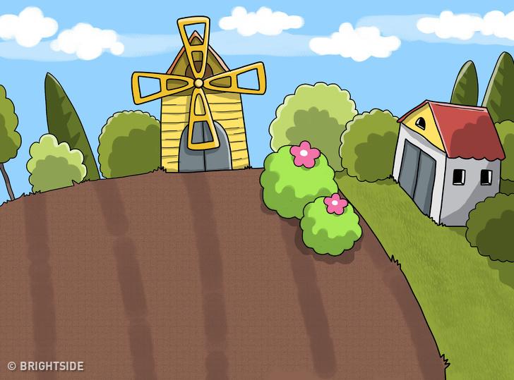 معمای چمن ها در مزرعه