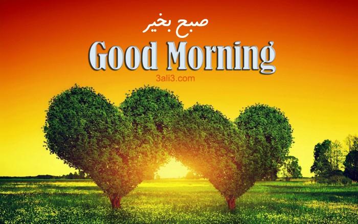 صبح بخیر به فرانسوی، آلمانی، اسپانیایی، ترکی، پارسی، ایتالیایی و عربی